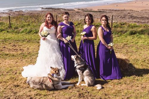 Wedding dogs (Copy)
