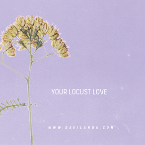 Your Locust Love