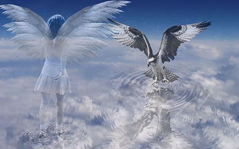 Kind-Engel und Seekopfadler.jpg