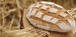 Bread Food Photographer