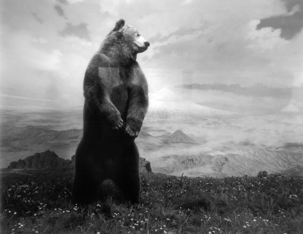Reflection on Grizzly