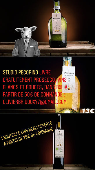 Livraison Studio Pecorino