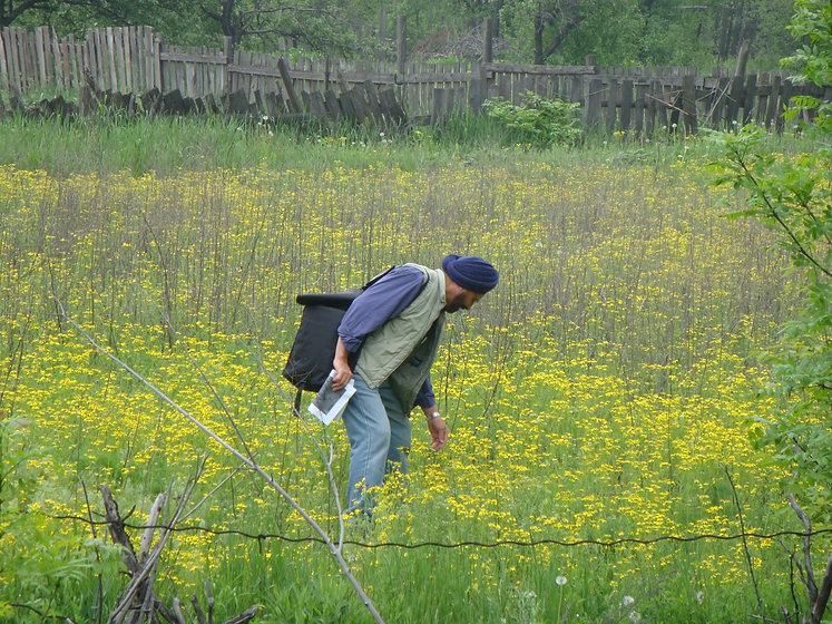 UkraineCoalSector-abandonedland-regenera