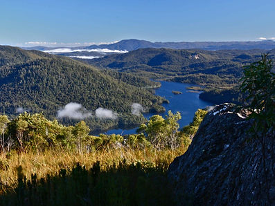 Mt Farrell Walking Track, just minute from Tullah Lakeside Lodge on Tasmania's West Coast