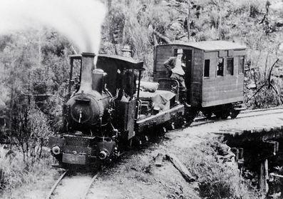 The Wee Georgie Wood Steam Railway