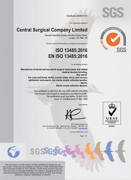 ISO 13485.2016_GB98.13174_issue 13 .jpg