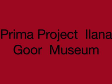 פרוייקט פרימה - מוזיאון אילנה גור