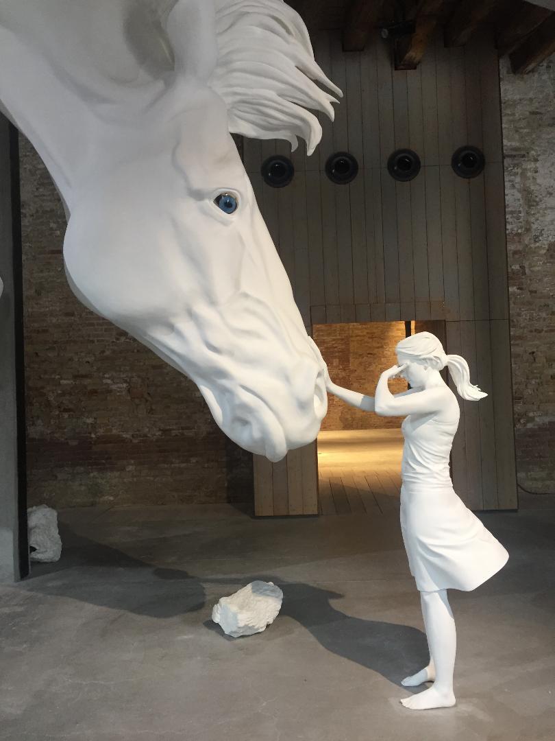 Claudia Fortes - The Horse Problem - Pavillion of Argentina, Venice Biennial 2017