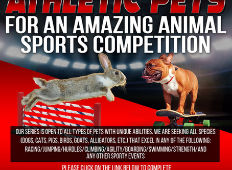 CASTING ATHLETIC PETS!