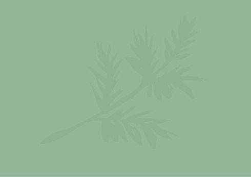 Green with leaf exact colour_Page_1.jpg