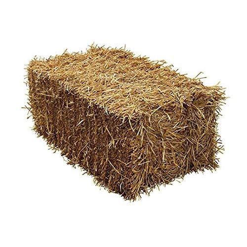 Shout us a Small Bale