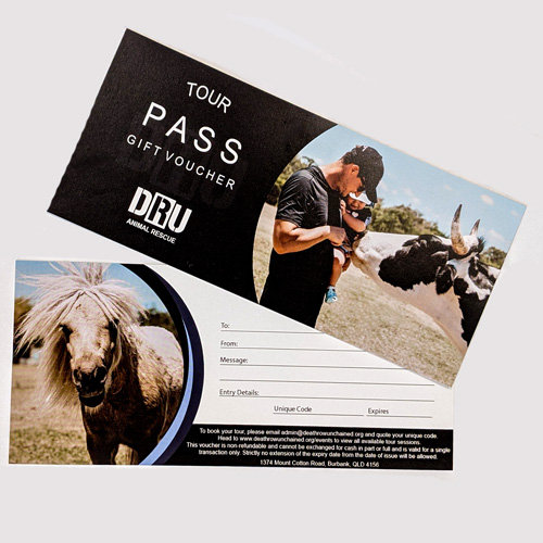 Double Adult Tour Pass Gift Voucher