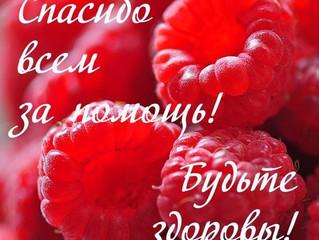 """«Благотворительная акция """"Рука помощи"""""""
