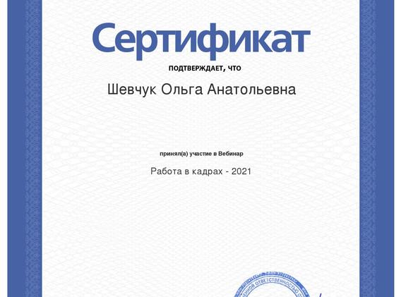 сертификат вебинара кадры 2021 (1).jpeg