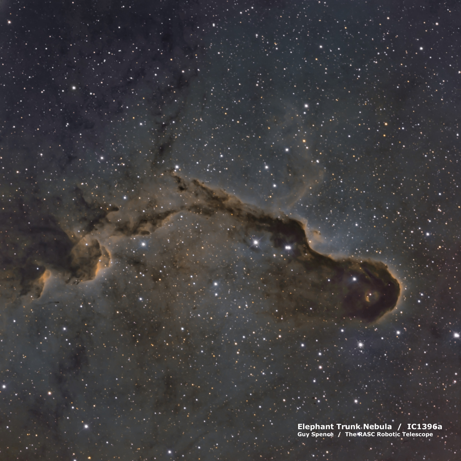 Elephant Trunk Nebula - IC1396a