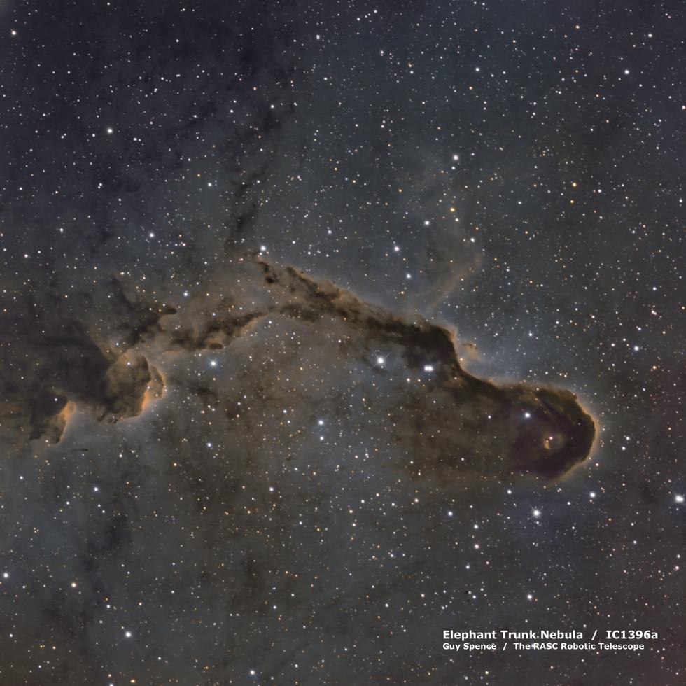 Elephant Trunk Nebula - IC1396a