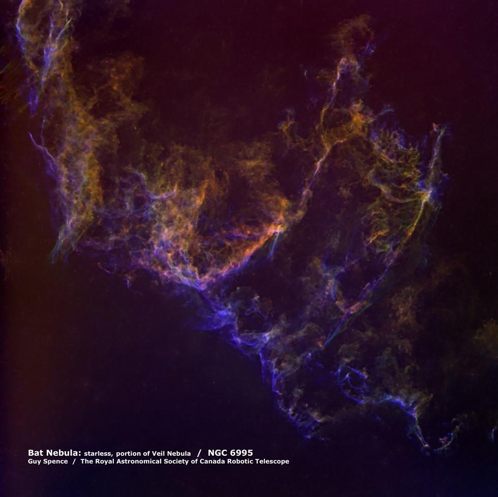 Bat Nebula / NGC6995