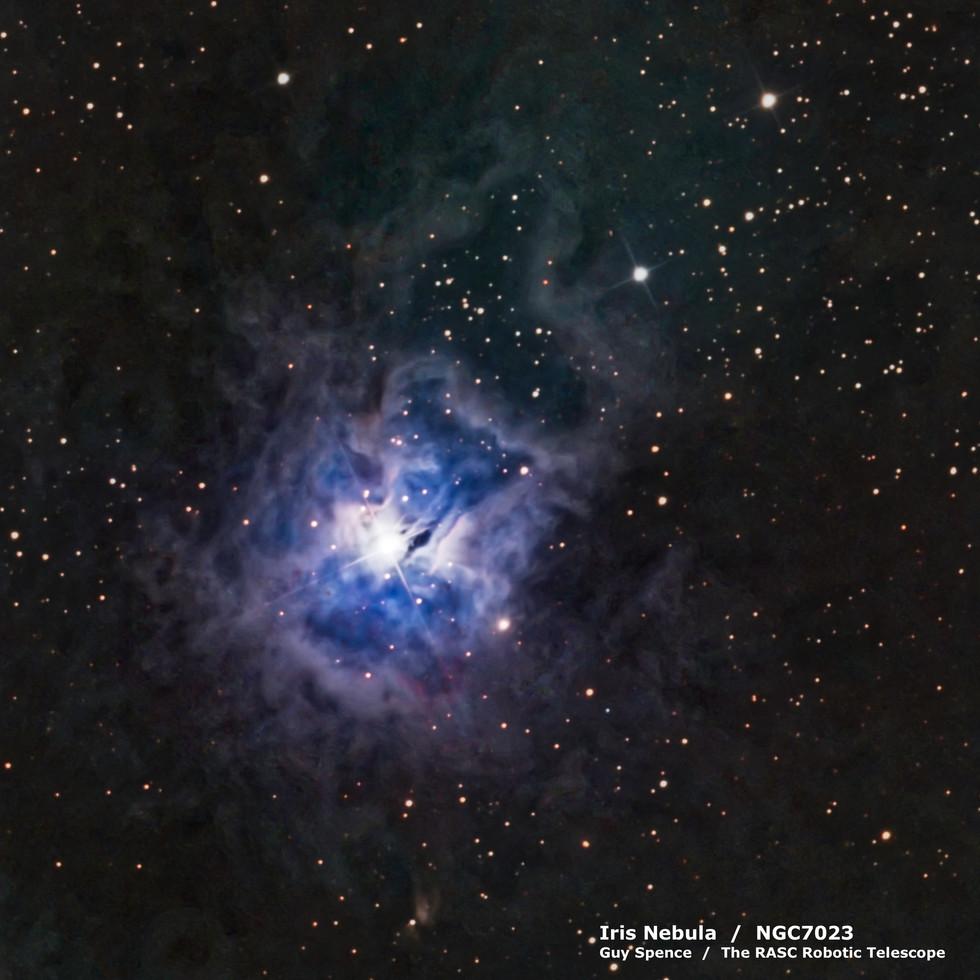 Iris Nebula / NGC7023