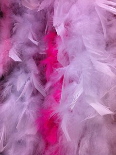 pink_feather_boa