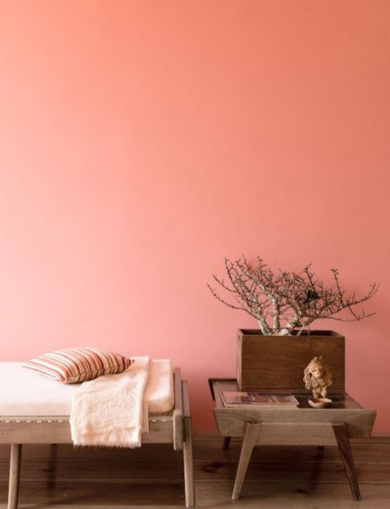 """""""Living Coral"""" painted walls"""