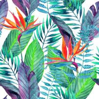 Tropical artwork in coral and green