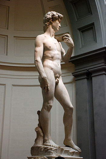 English: Michelangelo's David