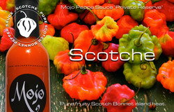 MPS Private Reserve Scotche Advert 300DP