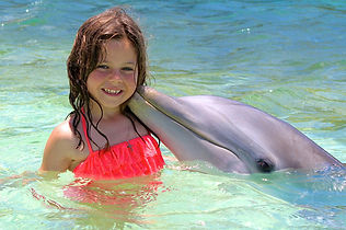DolphinEncounter1.jpg