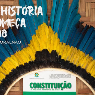 """Il """"marco temporal"""" e il diritto originario alla terra in Brasile"""