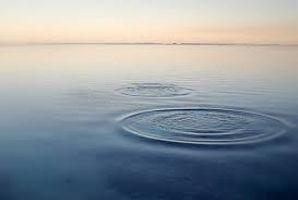 Ronds dans l'eau.jpg
