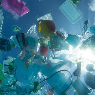 Plastic ban: una soluzione alla dispersione della plastica nell'ambiente?