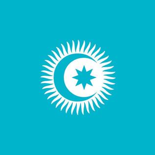 Il Consiglio Turco: Panturchismo in Asia centrale