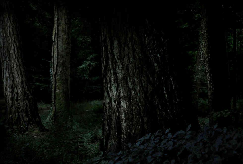 3_dark.jpg