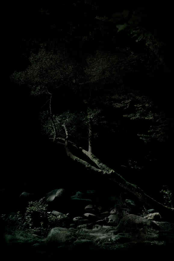 2_dark.jpg