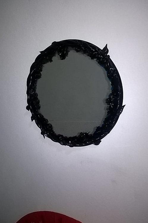 Espelho da Bruxa - Trepadeiras