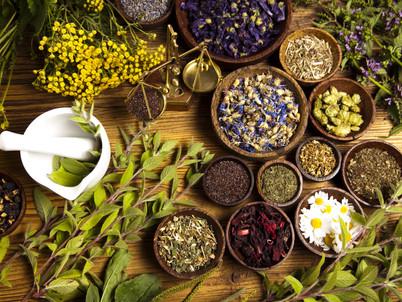 Herbologia |.| Curiosidades.