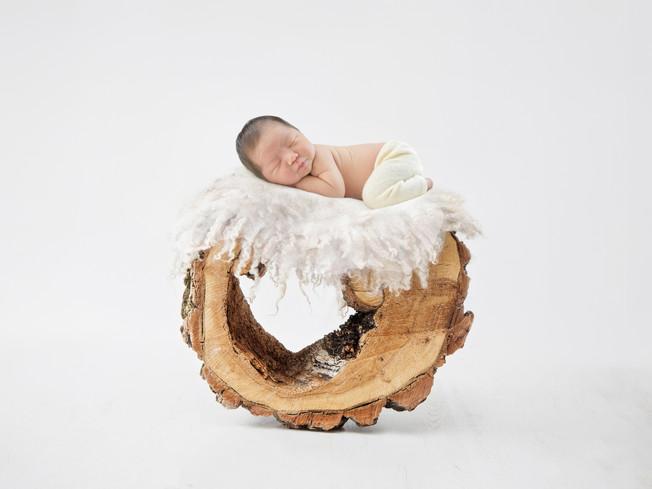 wood ring natural_9305.jpg