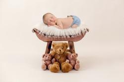 Teddy bear_9516