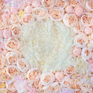 peach pink flower wall