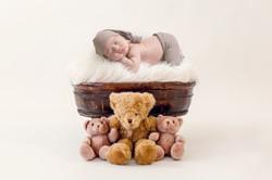teddy bear 2_4700