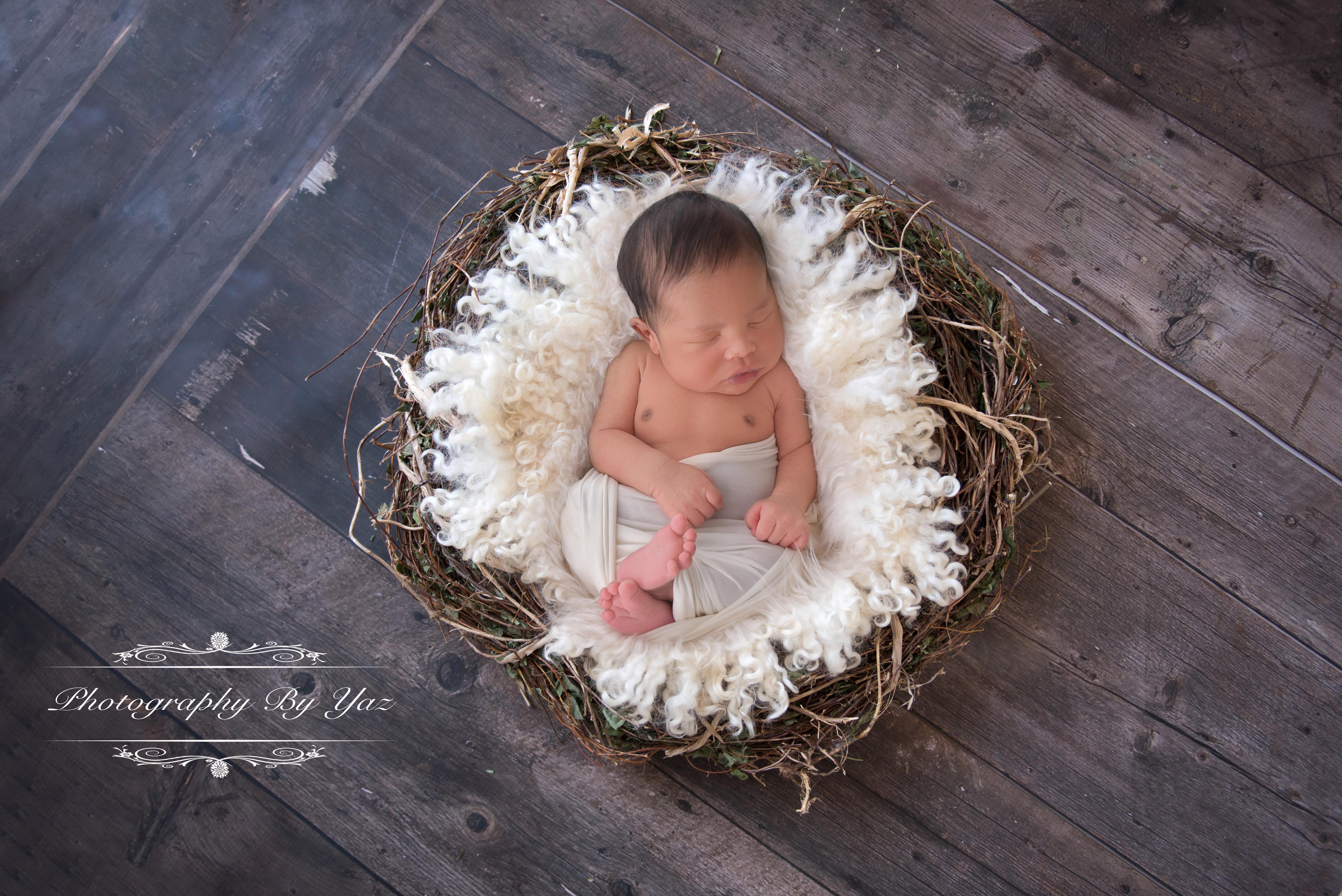 Newborn Photography wood floors