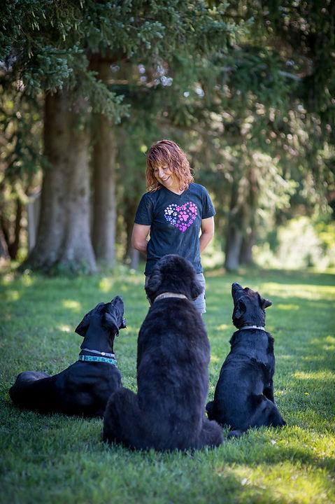 TLC dog trainer Donna-TLC dog trainer Donna-0248 (2).jpg