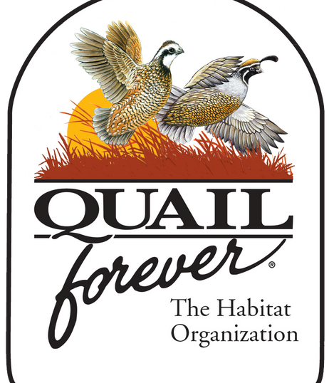 Quail-Forever.png