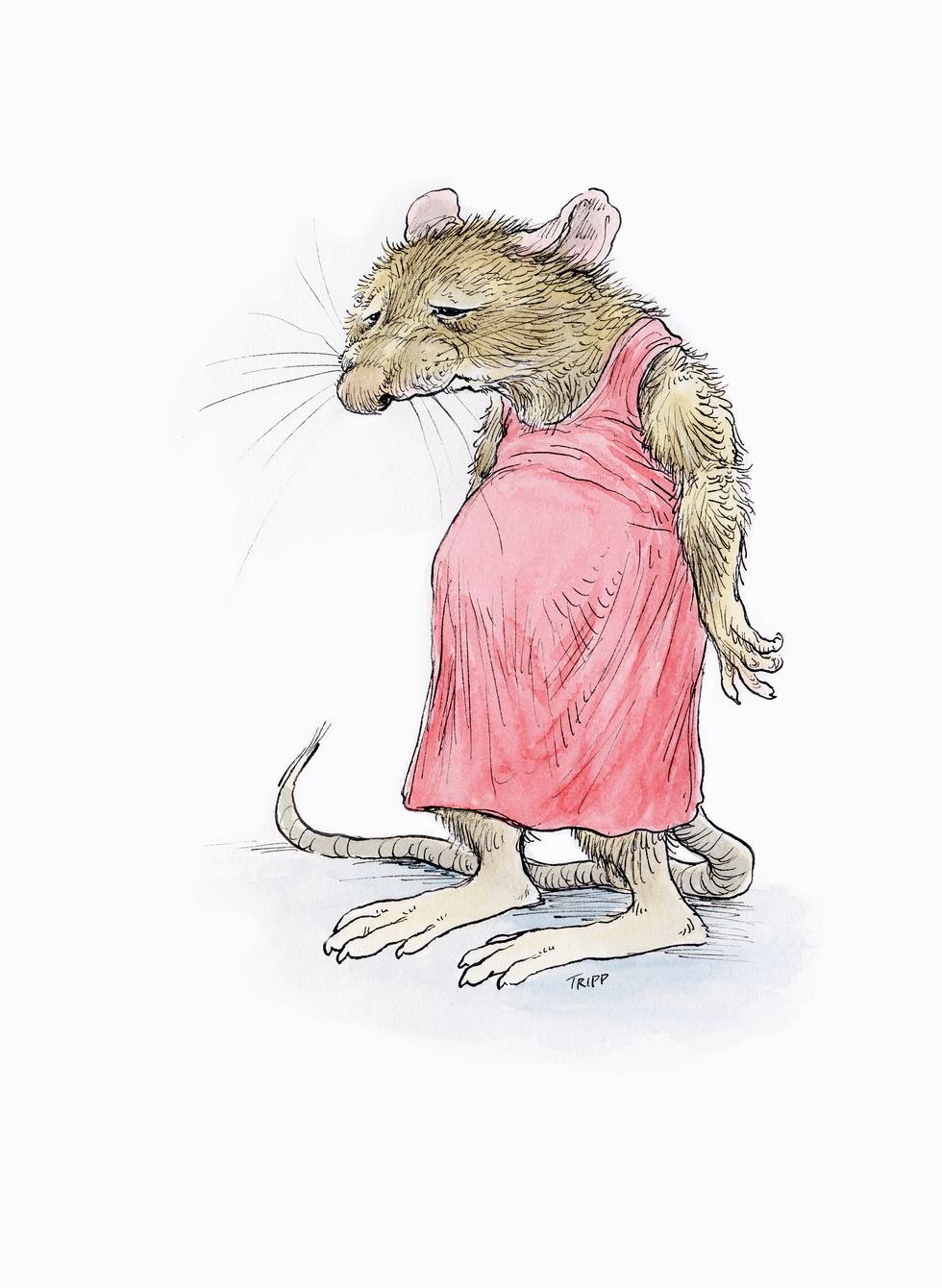 PP Rats!_300.png