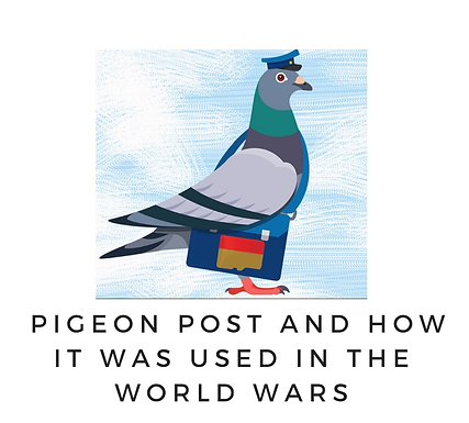 Communication in History: Pigeon Post and How it Was Used in the World Wars