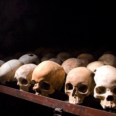 Racializing Social Divides: How Belgian Colonization Made Way for the Rwandan Genocide