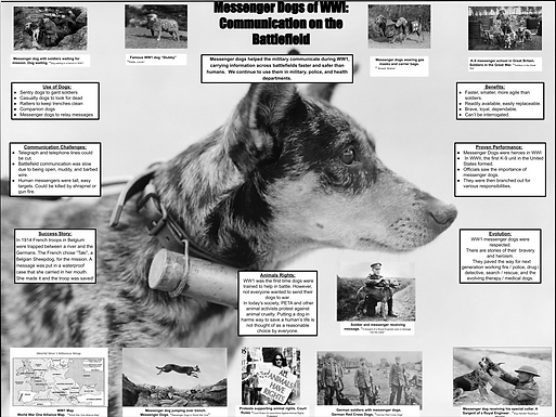 Messenger Dogs of WW1: Communication on the Battlefield