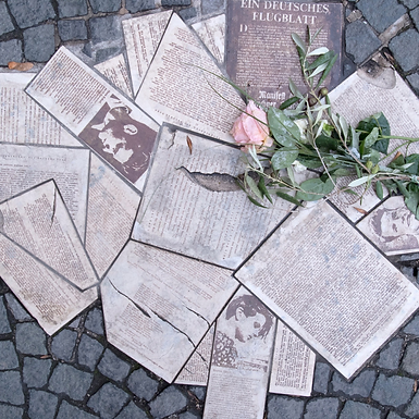 The White Rose: The Students Who Resisted the Nazi Regime