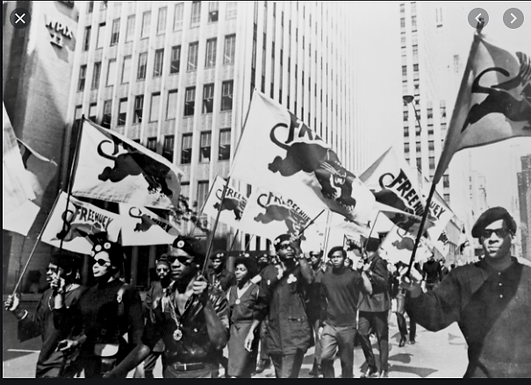 Determining Their Destiny: The Black Panther Party and Their Ten Point Program