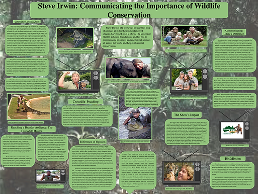 Steve Irwin: Communicating the Importance of Wildlife Conservation